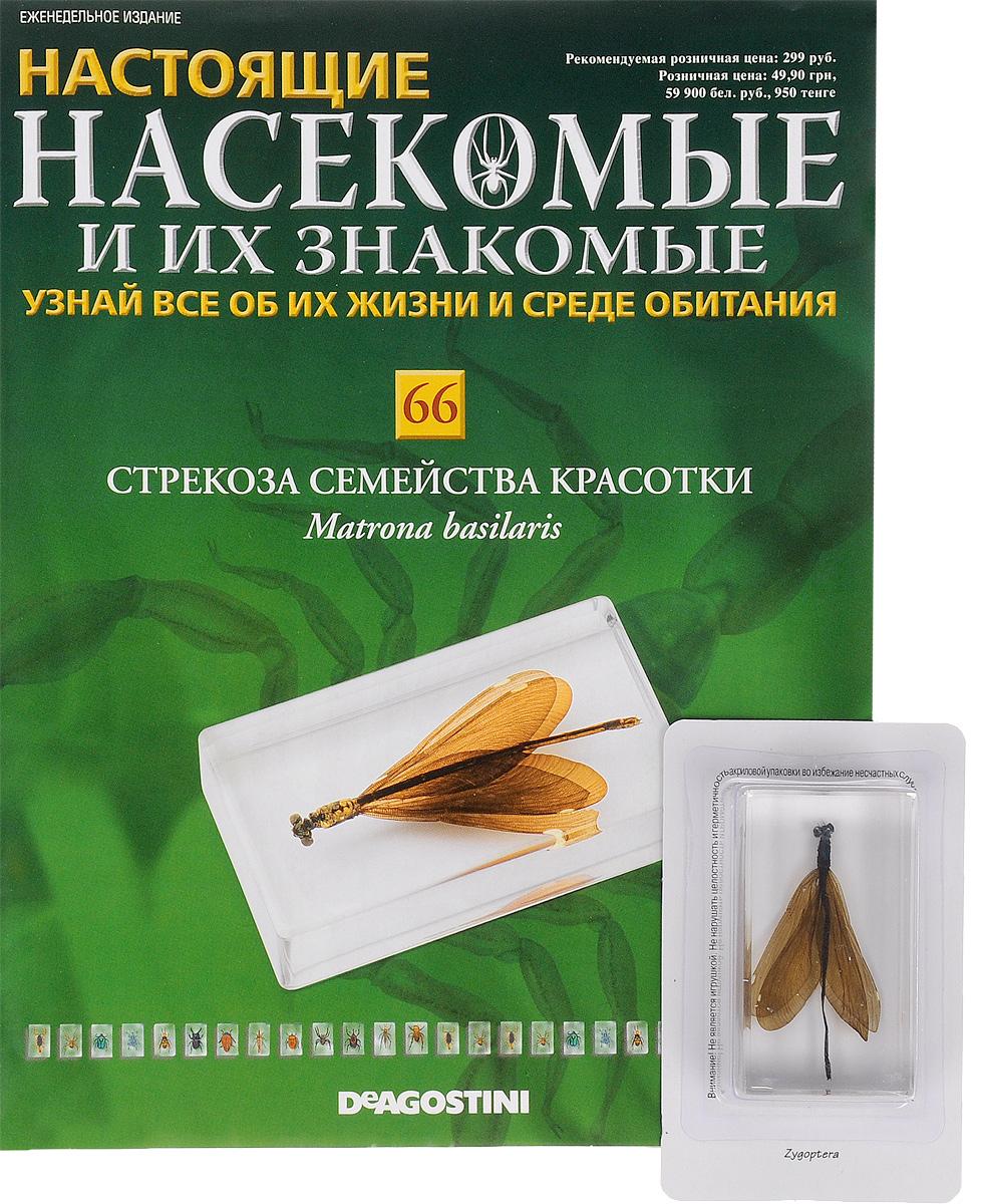 Журнал Насекомые и их знакомые №66 журнал насекомые и их знакомые 57