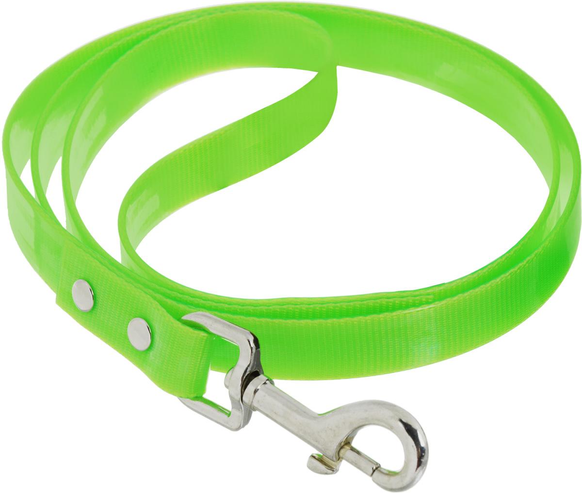 Поводок для собак Каскад Синтетик, цвет: салатовый, ширина 2 см, длина 2 м поводок для собак каскад классика двухсторонний со стальным карабином ширина 2 см длина 1 2 м