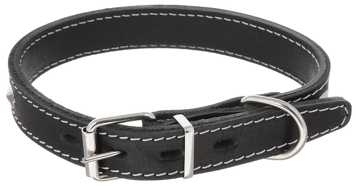 """Ошейник для собак Каскад """"Классика"""", двойной, ширина 2,5 см, обхват шеи 39-46 см. 00025022ч"""