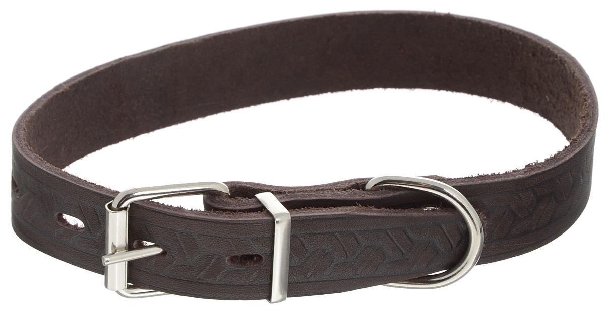 """Ошейник для собак Каскад """"Классика"""", цвет: темно-коричневый, ширина 2,5 см, обхват шеи 39-46 см. 00025081к"""