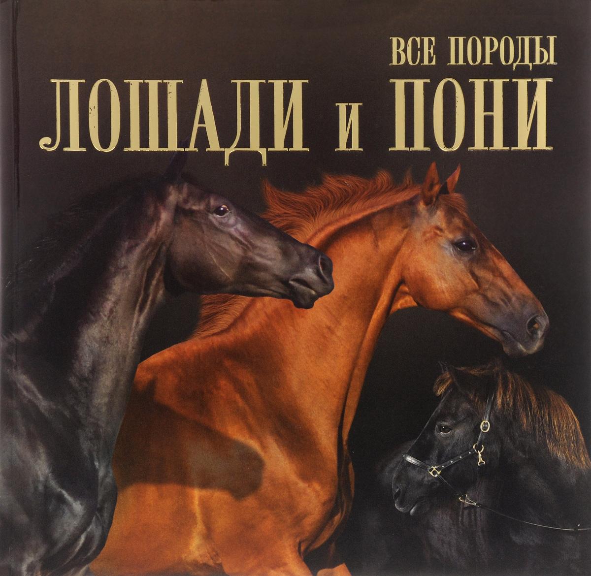 В. М. Жабцев Все породы. Лошади и пони иванова м в костикова о д лошади и пони