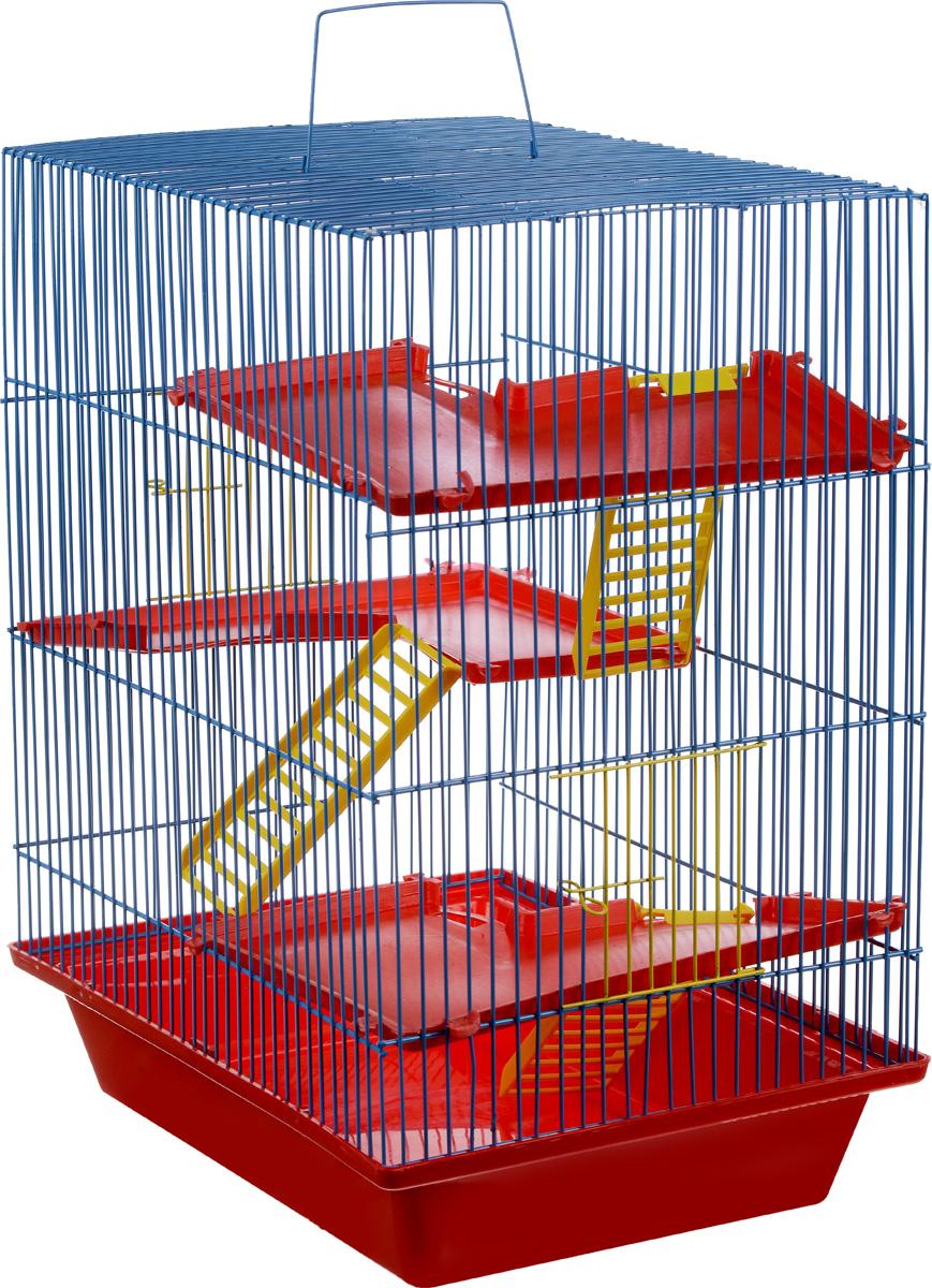 Клетка для грызунов ЗооМарк Гризли, 4-этажная, цвет: красный поддон, синяя решетка, красные этажи, 41 х 30 х 50 см240_красный, синийКлетка ЗооМарк Гризли, выполненная из полипропилена и металла, подходит для мелких грызунов. Изделие четырехэтажное. Клетка имеет яркий поддон, удобна в использовании и легко чистится. Сверху имеется ручка для переноски. Такая клетка станет уединенным личным пространством и уютным домиком для маленького грызуна.