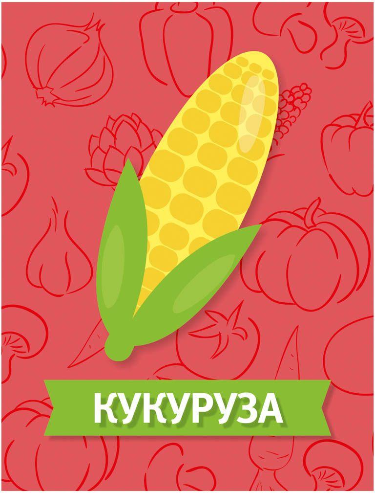 Издательская группа Квадра Обучающие карточки Овощи Издательская группа