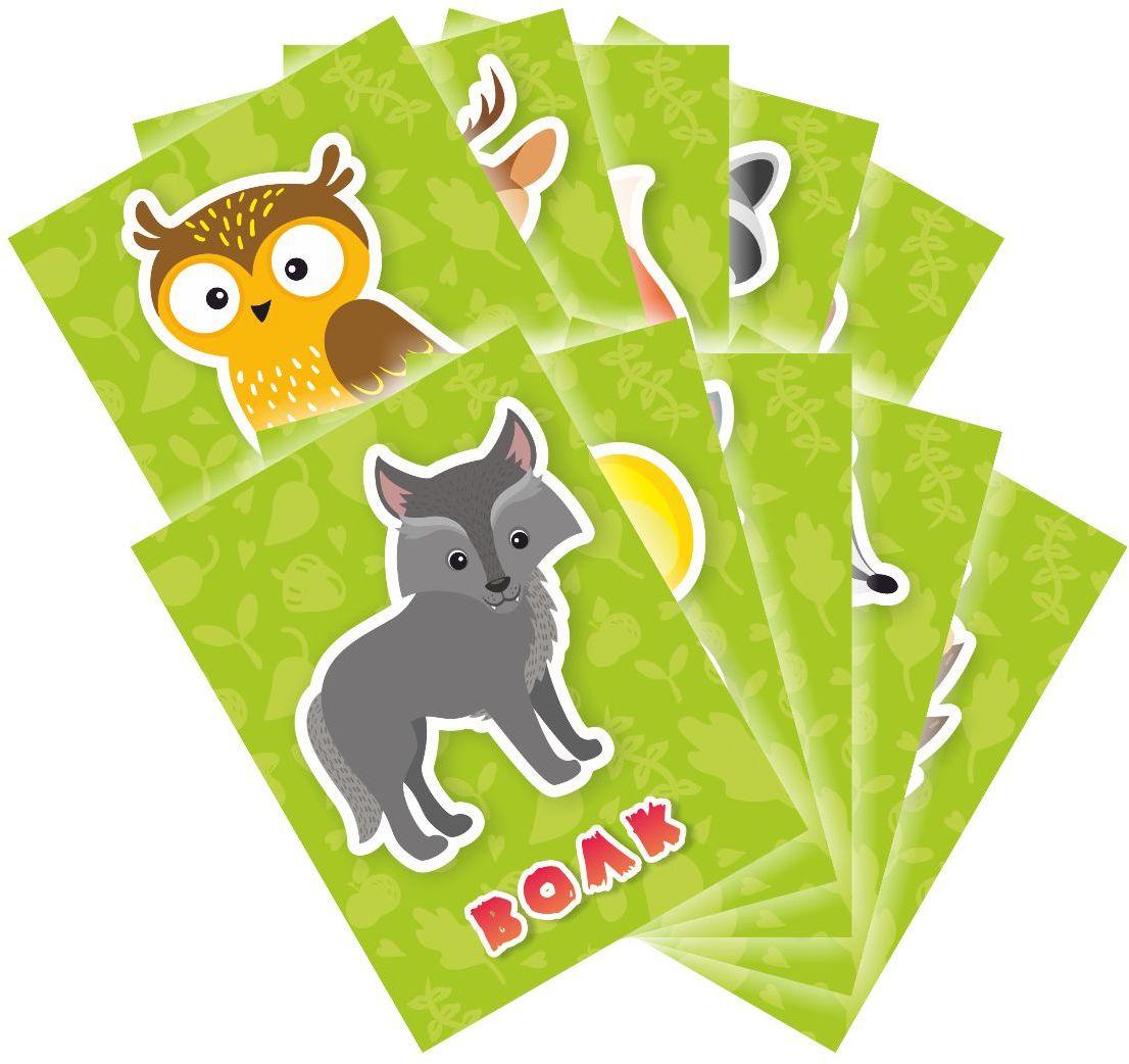 Издательская группа Квадра Обучающие карточки Животные
