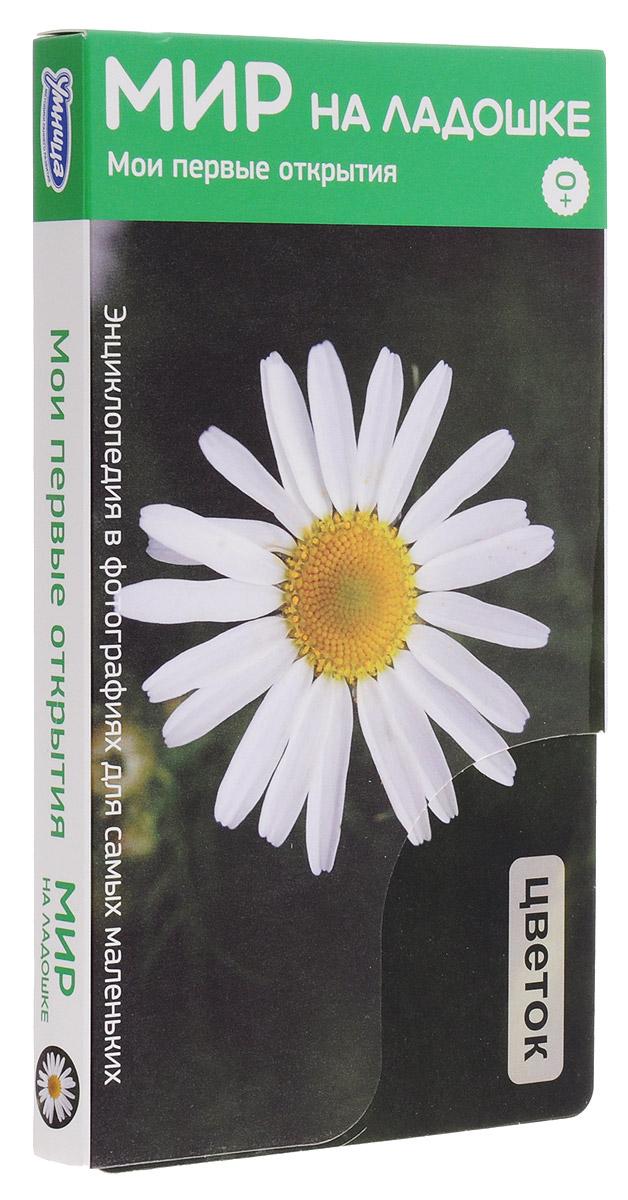Умница Обучающие карточки Мои первые открытия Цветок
