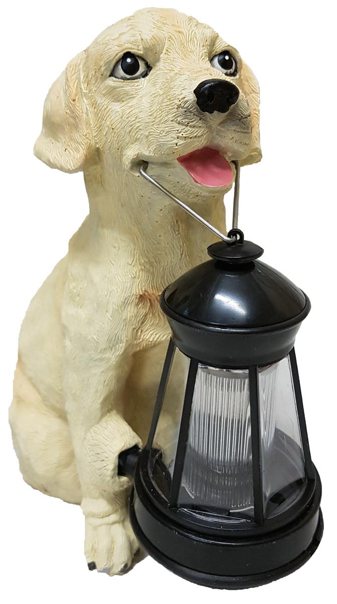 Декоративный светильник Счастливый дачник Лабрадор, на солнечной батарееHW-9041Декоративный светильник на солнечной батарее Счастливый дачник Лабрадор - простое и эффективное решение освещения и декора. Он выполнен в виде собаки породы лабрадор, которая держит в зубах небольшой фонарик. Светильник идеально подходит для украшения дачи, садового участка отдыха и других территорий. Также его можно использовать для выделения затемненных уголков участка, подсветки дорожек и для освещения ступенек. Данное устройство экологично и не наносит вреда окружающей среде, так как заряжается от солнечного света с помощью солнечной батареи и работает от встроенного Ni-Cd аккумулятора. Солнечный свет преобразуется в энергию, подзаряжая аккумулятор в течение дня, а при наступлении светильник автоматически включается.Материал: пластик, полистоун.Размер фигурки собаки: 25 см х 15 см х 20,5 см.Размер фонаря: 13,5 см х 7 см х 7 см.