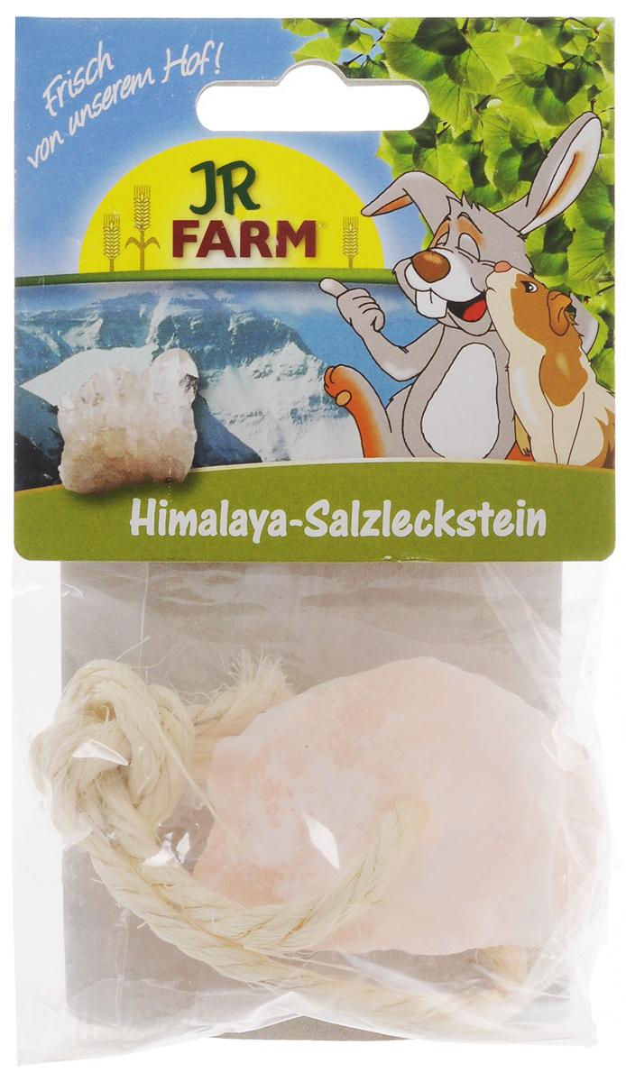 Лакомство для грызунов JR Farm Соль-лизунец, 80 г игровые наборы tomy britains big farm фермерский прицеп со свинками