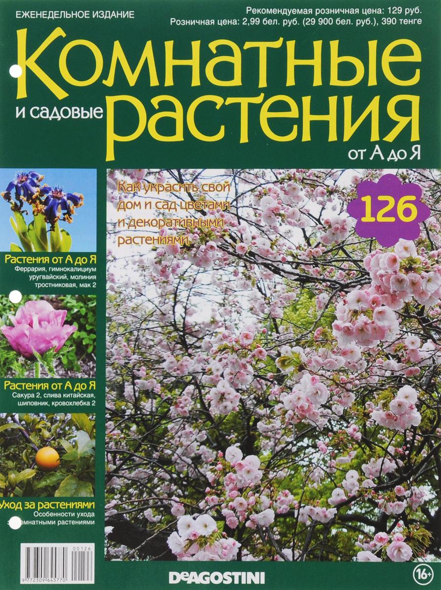 Журнал Комнатные и садовые растения. От А до Я №126 лесоповал я куплю тебе дом lp
