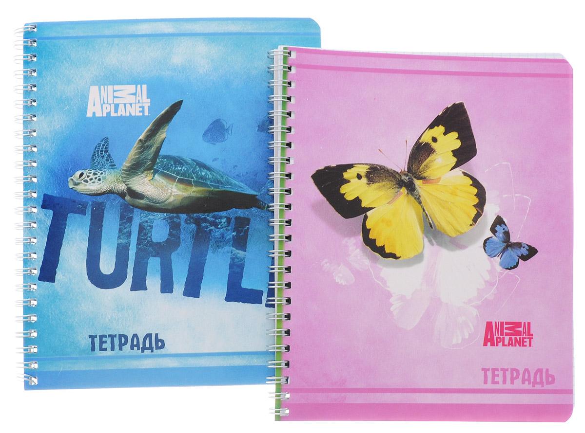 Action! Набор тетрадей Animal Planet 80 листов в клетку 2 шт олег ольхов рыба морепродукты на вашем столе