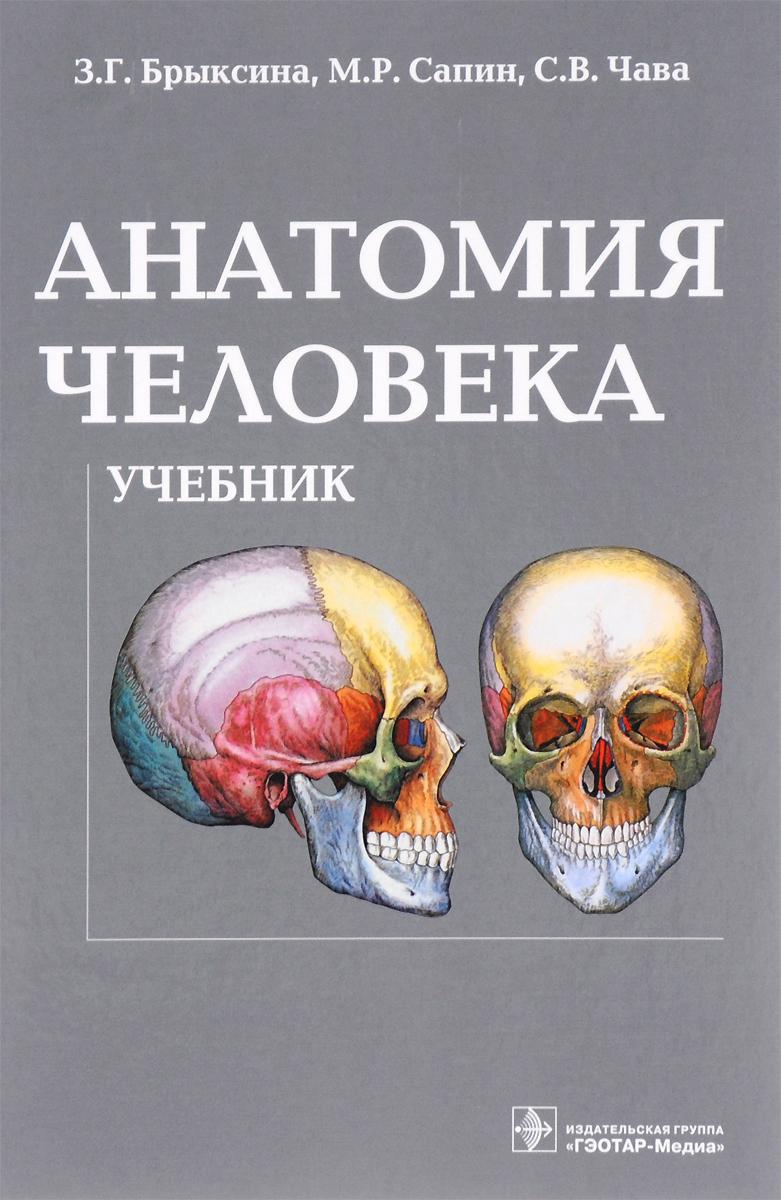 З. Г. Брыксина, М. Р. Сапин, С. В. Чава Анатомия человека. Учебник з г брыксина м р сапин с в чава анатомия человека учебник
