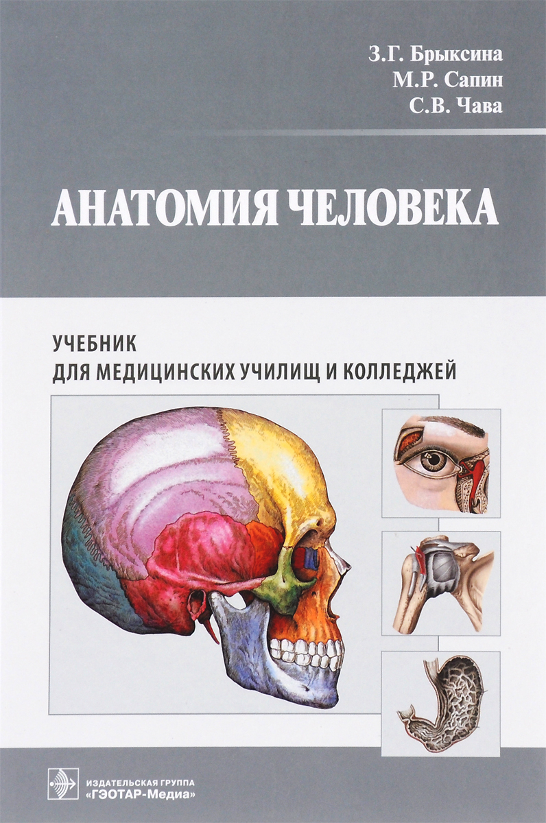 З. Г. Брыксина, М. Р. Сапин, С. В. Чава Анатомия человека. Учебник капанджи а нижняя конечность функциональная анатомия