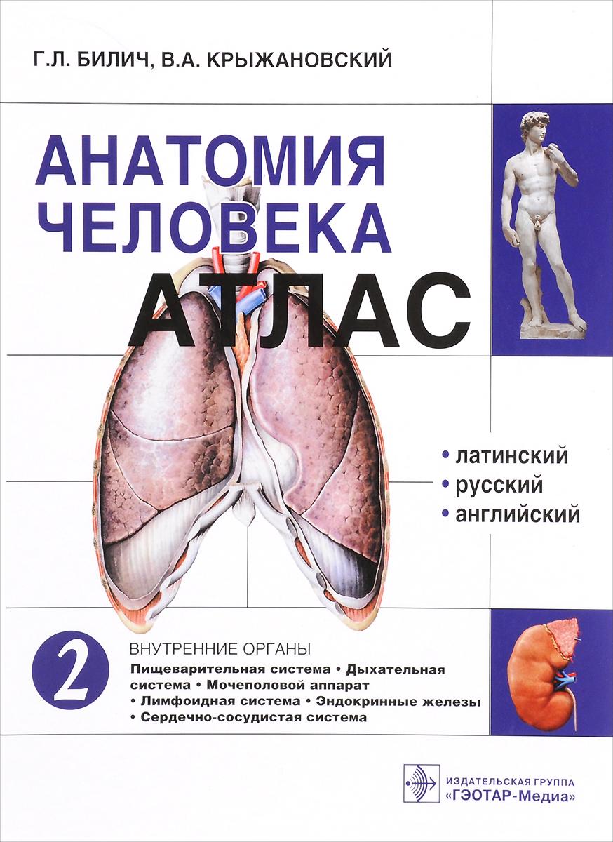 Анатомия человека. Атлас. В 3 томах. Том 2. Внутренние органы