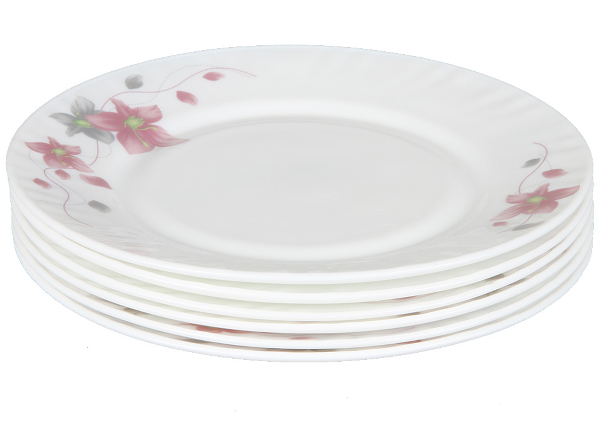 Набор плоских тарелок Rosenberg, 6шт, 20см. 1257-377.858@23034набор плоских тарелок, 6шт, диаметр тарелки 20см, даропрочное стекло
