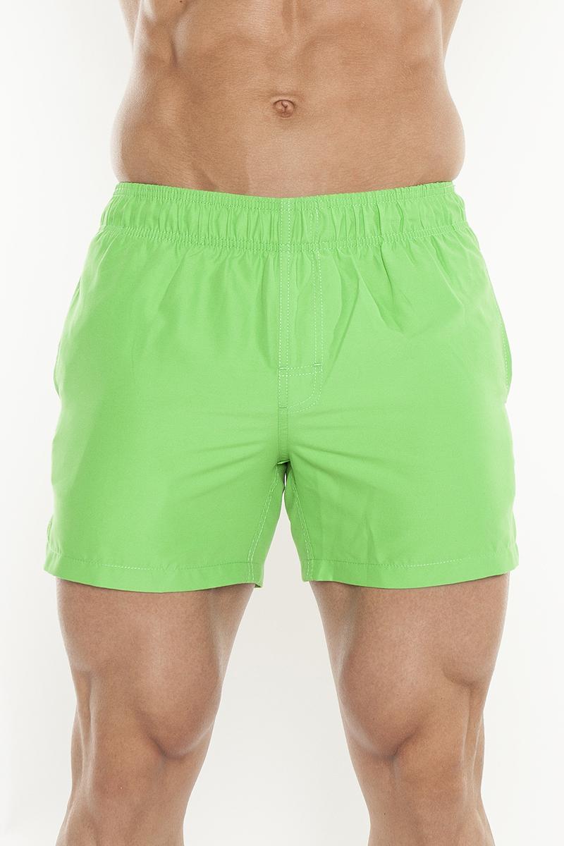 Шорты для плавания мужские Torro, цвет: светло-зеленый. TSWT05. Размер M (48)TSWT05Мужские шорты для плавания Torro изготовлены из 100% полиэстера. Материал изделия приятный на ощупь, имеет высокую износостойкость, быстро сохнет. Модель дополнена широкой эластичной резинкой на талии. Объем пояса регулируется при помощи шнурка-кулиски. Шорты имеют два втачных кармана по бокам и один накладной карман сзади. Эти модные шорты послужат отличным дополнением к вашему гардеробу. В них вы всегда будете чувствовать себя уверенно и комфортно.