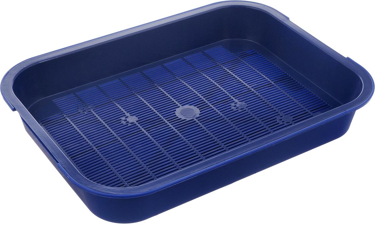 Туалет для кошек Каскад, с сеткой, цвет: синий, 38 х 28 х 6 см9307034_синийТуалет для кошек Каскад изготовлен из высококачественного цветного пластика со съемной сеткой. Туалет с сеткой может использоваться как с наполнителем, так и без него. Это самый экономичный и простой в употреблении предмет обихода для кошек и котов.Туалет легко моется водой.