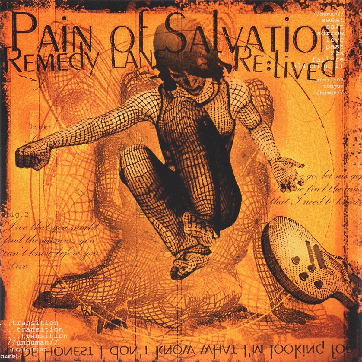 Pain Of Salvation Pain Of Salvation. Remedy Lane Re:Lived (2 LP + CD) cd pain of salvation in the passing light of day