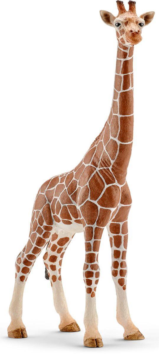 Schleich Фигурка Жираф самка фигурки игрушки schleich жираф самка