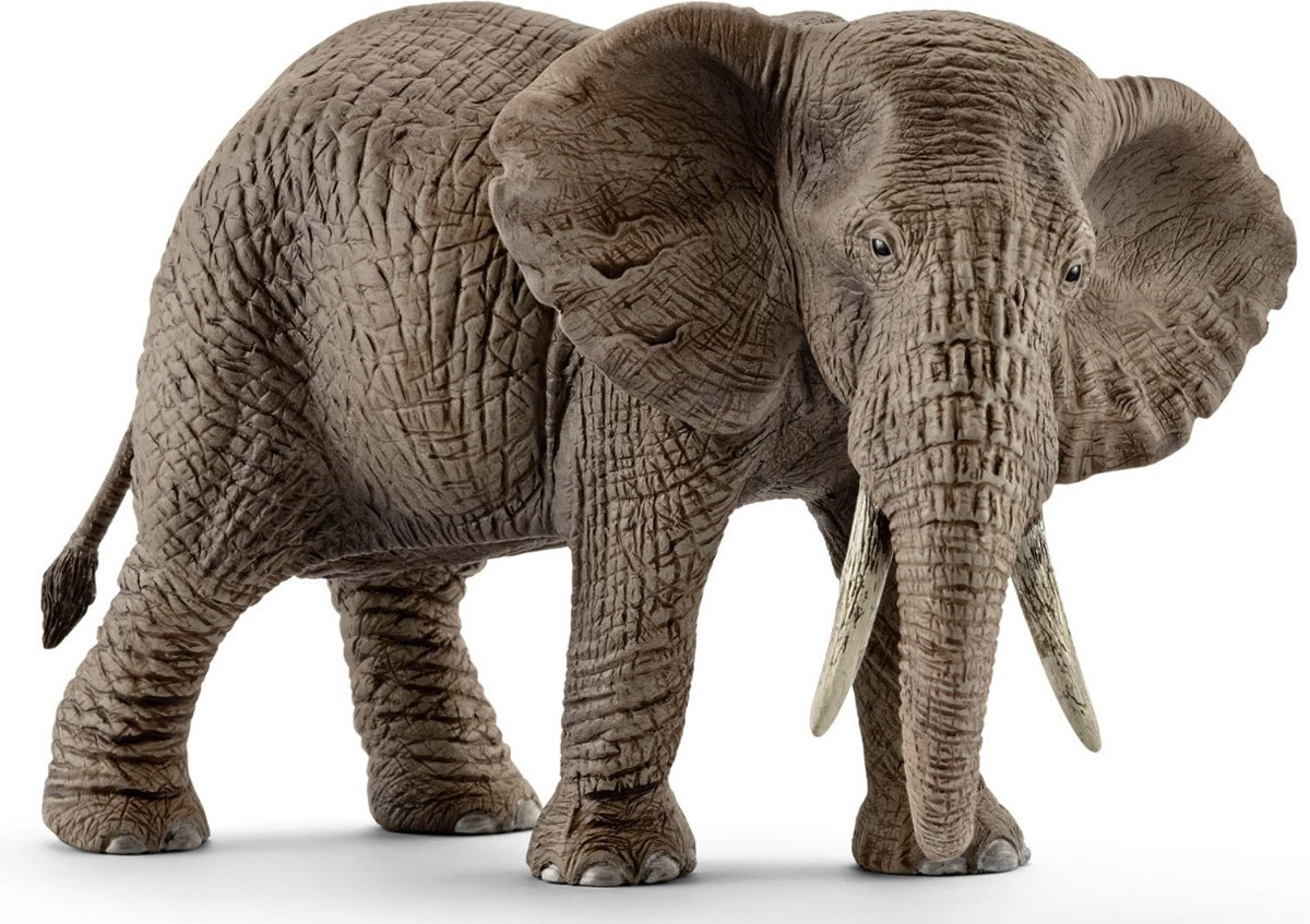 Schleich Фигурка Африканская слониха цена