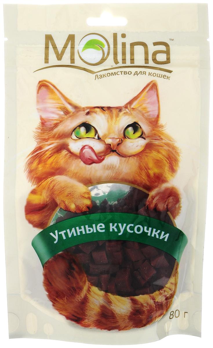Лакомство для кошек Molina Утиные кусочки, 80 г лакомство для попугаев mr alex минералы 80 г