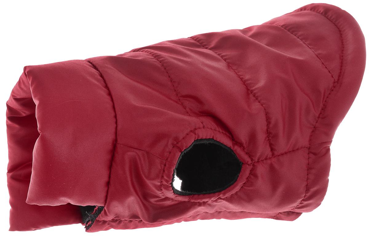 Куртка для собак Алькор, унисекс, цвет: красный. Размер S3301Куртка для собак Алькор отлично подойдет для прогулок в прохладную погоду. Куртка изготовлена из полиэстера, защищающего от ветра и осадков, с утеплителем из синтепона, который сохранит тепло даже в сильные морозы, а в качестве подкладки используется флис, который обеспечивает отличный воздухообмен. Куртка застегивается на липучку, благодаря чему ее легко надевать и снимать. Изделие оснащено отверстием для поводка.Благодаря такому комбинезону простуда не грозит вашему питомцу, и он сможет испытать не сравнимое удовольствие от игр и забав.Обхват груди: 35-40 см. Длина спины: 30-35 см.Одежда для собак: нужна ли она и как её выбрать. Статья OZON Гид