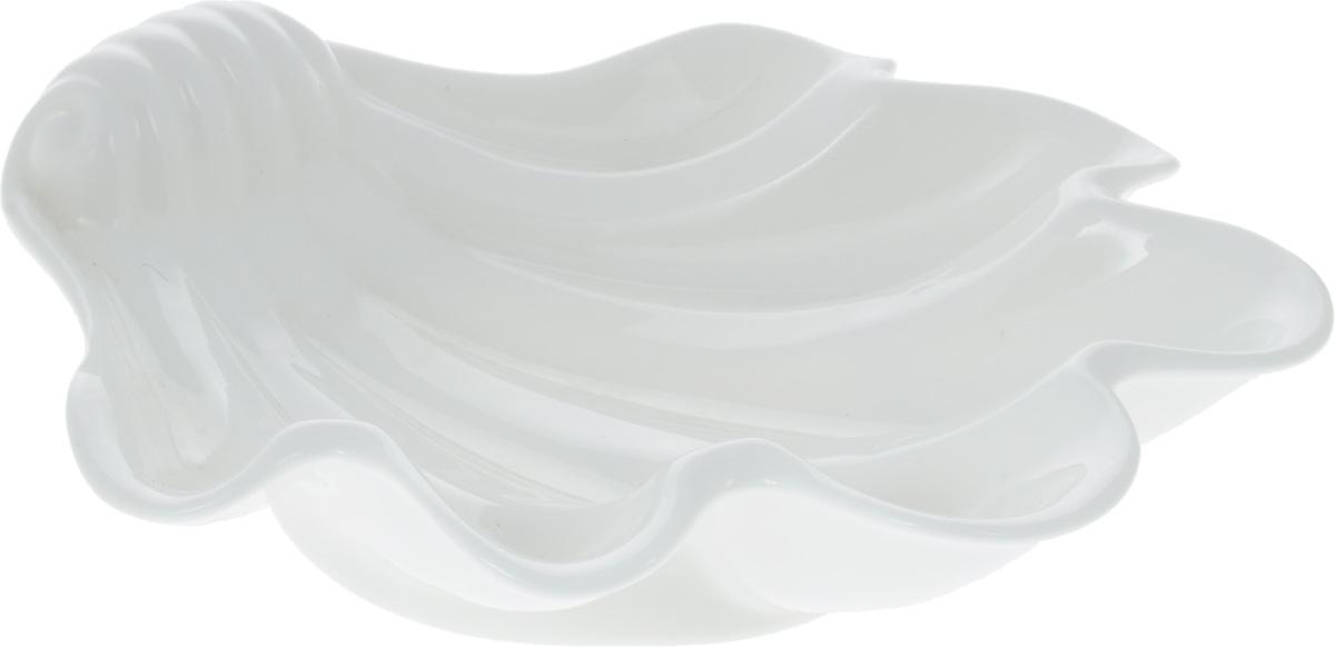 """Оригинальное блюдо Wilmax """"Ракушка"""", изготовленное из фарфора с  глазурованным покрытием, прекрасно  подойдет для подачи нарезок, закусок и других  блюд. Оно украсит ваш кухонный стол, а также станет  замечательным подарком к любому празднику. Размер блюда: 23,5 х 22 см."""