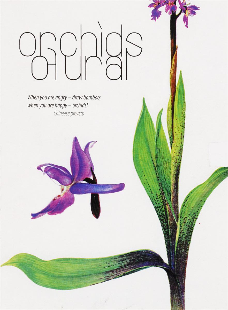 Эдуард Кубенский Орхидеи Урала. Набор открыток самые дешевые орхидеи в москве