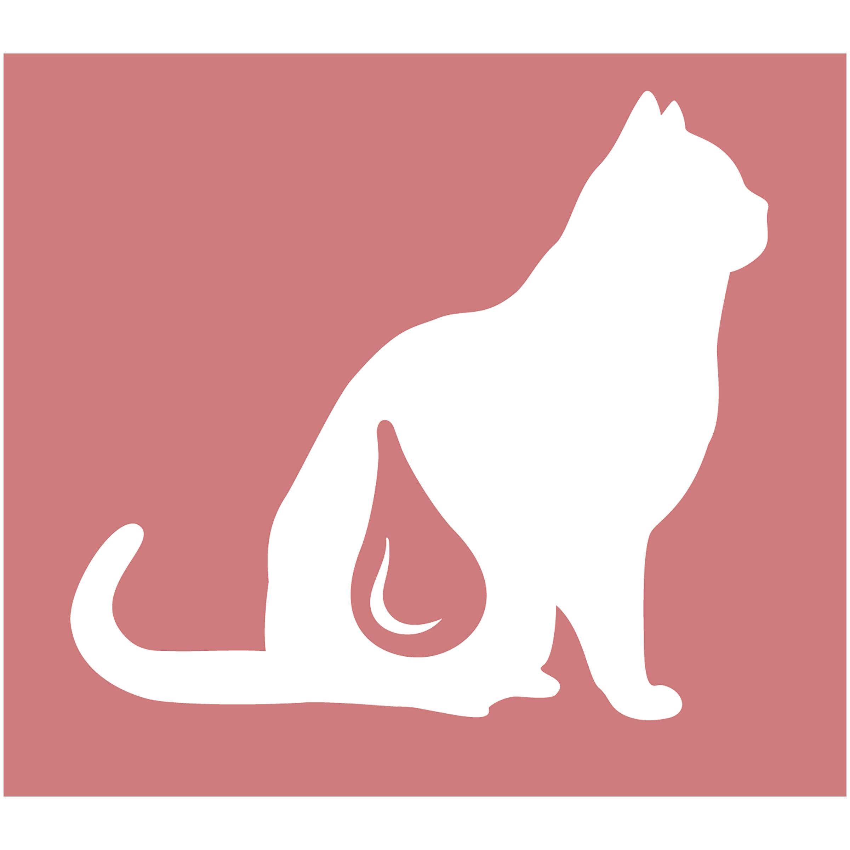 Корм_сухой_Cat_Chow_~Special_Care~_-_полнорационный_корм_для_взрослых_кошек,_для_здоровья_мочевыводящих_путей._Сама_природа_вдохновляет_компанию_~PURINA~_на_разработку_кормов,_которые_максимально_отвечают_потребностям_ваших_питомцев,_с_учетом_их_природных_инстинктов._Имея_более_чем_80-ти_летний_опыт_в_области_питания_животных,_~PURINA~_создала_новый_корм_~Cat_Chow~_-_полностью_сбалансированный_корм,_который_не_только_доставит_удовольствие_вашей_кошке,_но_и_будет_полезным_для_ее_здоровья._Особенности_корма_Cat_Chow_~Special_Care~:Высокое_содержание_мяса,_с_источниками_высококачественного_белка_в_каждой_порции_для_поддержания_оптимальной_массы_тела._Особое_сочетание_натуральных_ингредиентов:_тщательно_отобранные_травы_и_овощи_(петрушка,_шпинат,_морковь,_горох)._Отборные_ингредиенты_придают_особый_аромат._Высокое_содержание_витамина_Е_для_поддержания_естественной_защиты_организма_питомца._Содержит_мякоть_свеклы_и_цикорий_для_поддержания_здорового_пищеварения_и_уменьшения_запаха_от_туалетного_лотка._Помогает_поддерживать_здоровье_мочевыводящих_путей_благодаря_необходимым_минеральным_веществам_и_поддержанию_оптимального_уровня_pH_мочи._Состав:_злаки,_мясо_и_субпродукты_(мясо_14%25),_экстракт_растительного_белка,_масла_и_жиры,_продукты_переработки_овощей_(сухая_мякоть_свеклы_2,7%25,_петрушка_0,4%25),_овощи_(сухой_корень_цикория_2%25,_морковь_1,3%25,_шпинат_1,3%25,_зеленый_горох_1,3%25),_минеральные_вещества,_дрожжи.Добавленные_вещества_(на_1_кг):_витамин_А_16900_МЕ;_витамин_D3_1400_МЕ;_витамин_Е_120_МЕ;_железо_60_мг;_йод_2,1_мг;_медь_12_мг;_марганец_6_мг;_цинк_90_мг;_селен_0,14_мг._С_антиокислителями._Гарантируемые_показатели:_белок_34%25,_жир_12%25,_сырая_зола_7%25,_сырая_клетчатка_2%25.Товар_сертифицирован.