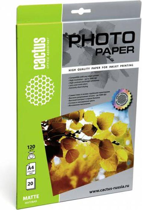 Cactus CS-MA412020 A4/120г/м2 матовая фотобумага для струйной печати (20 листов)CS-MA412020Фотобумага Cactus CS-MA412020 с матовым покрытием для струйной печати.Наслаждайтесь лучшими мгновениями вашей жизни в сочных и насыщенных цветах. Представляйте яркие и красочные презентации. Создавайте отпечатки высочайшего качества. Фотобумага Cactus совместима соструйными принтерами Hewlett Packard, Canon, Epson и другими марками. Высококлассное покрытие фотобумаги Cactus позволяет добиться максимально точной цветопередачи при печати фотографий и графики.