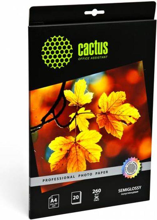 Cactus Prof CS-SGA426020 A4/260г/м2 полуглянцевая фотобумага для струйной печати (20 листов)CS-SGA426020Полуглянцевая фотобумага Cactus Prof CS-SGA426020 для струйной печати.Превратите ваши фотографии в произведения искусства и сохраните их в первозданном виде на многие годы.Фотобумага серии Cactus Professional незаменима для печати цифровых фотографий с максимальнымразрешением. Высококлассное покрытие и современная полимерная основа фотобумаги Cactus Professionalгарантируют максимально точную цветопередачу.Совместима со струйными принтерами Hewlett Packard, Canon, Epson и другими марками. Рекомендуется дляпрофессионального использования в фотостудиях, дизайнерских и художественных бюро.