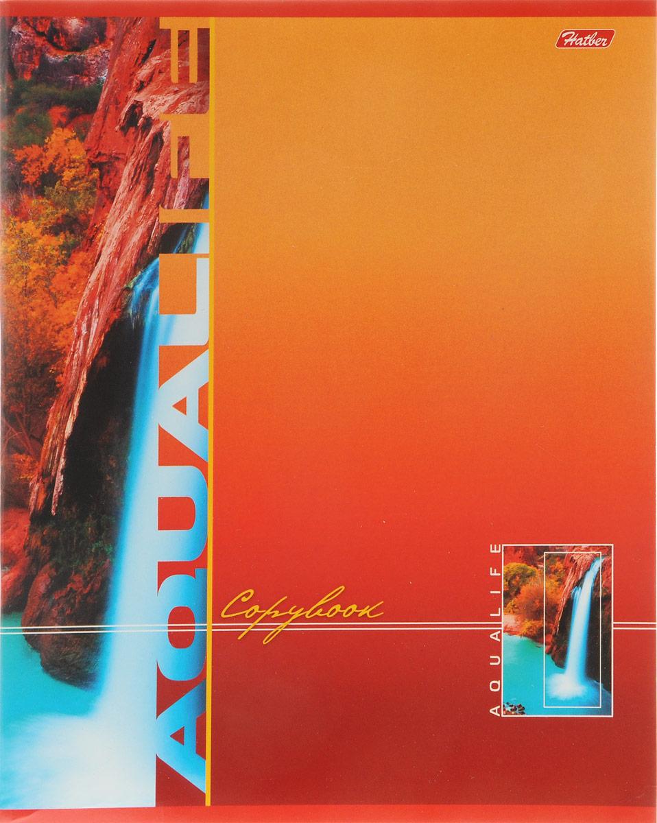 Hatber Тетрадь Аквалайф 96 листов в клетку цвет красный оранжевый96Т5B1_13892Тетрадь Hatber Аквалайф отлично подойдет для школьников, студентов и офисных работников.Обложка, выполненная из плотного картона, позволит сохранить тетрадь в аккуратном состоянии на протяжении всего времени использования. Лицевая сторона оформлена изображением водопада.Внутренний блок тетради, соединенный двумя металлическими скрепками, состоит из 96 листов белой бумаги. Стандартная линовка в клетку голубого цвета дополнена полями.
