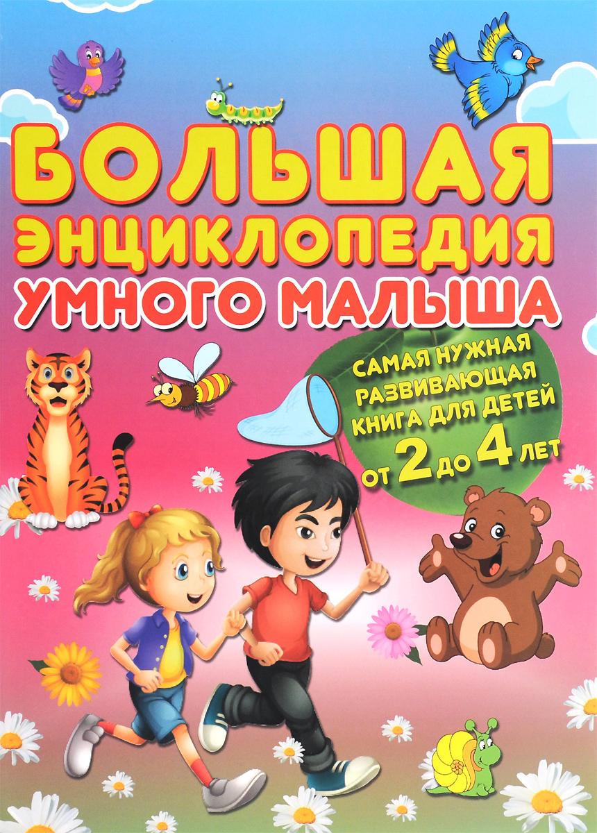 Большая энциклопедия умного малыша. Самая нужная развивающая книга для детей от 2 до 4 лет