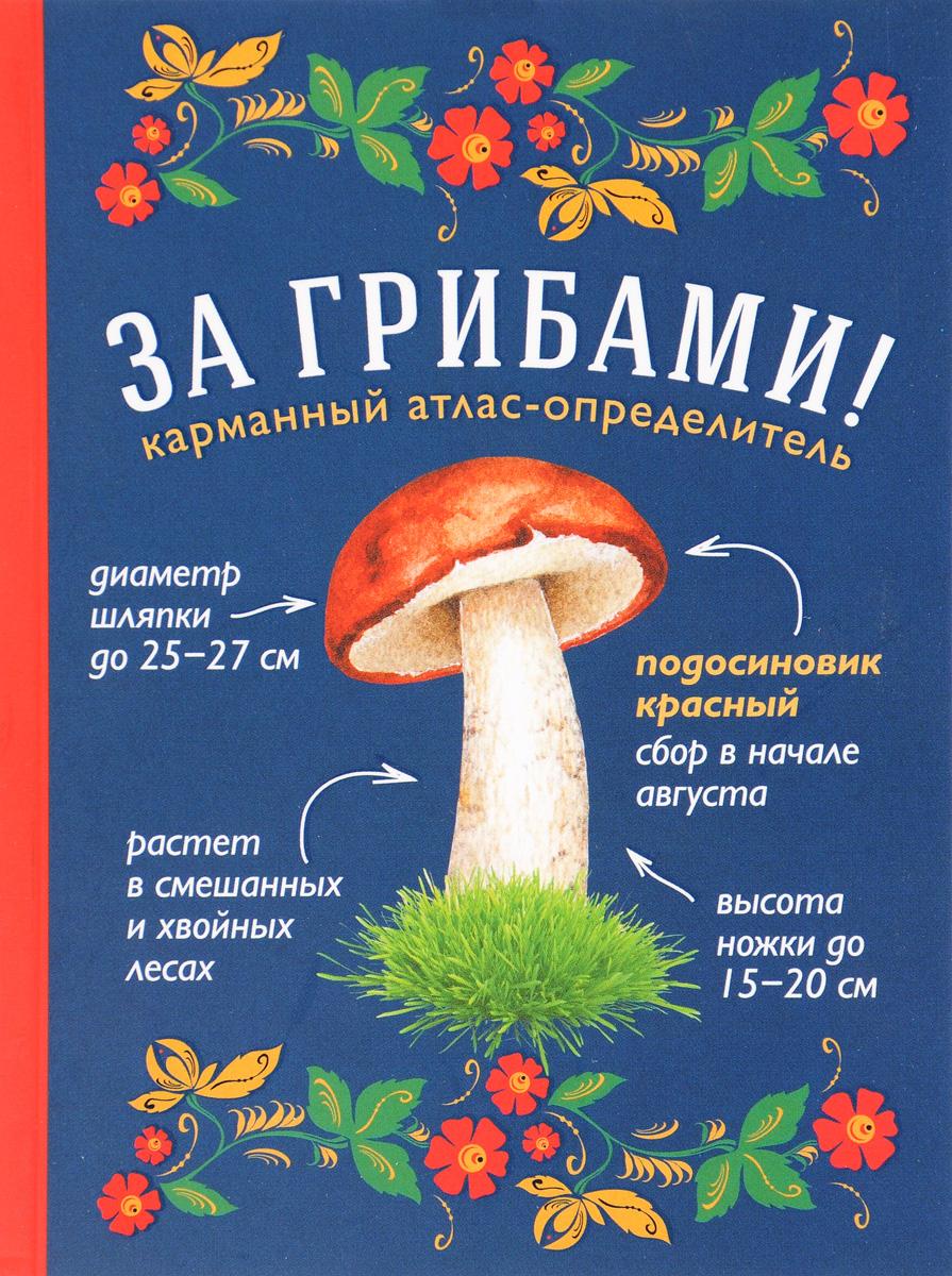 Т. А. Ильина За грибами! Карманный атлас-определитель татьяна ильина грибы атлас определитель
