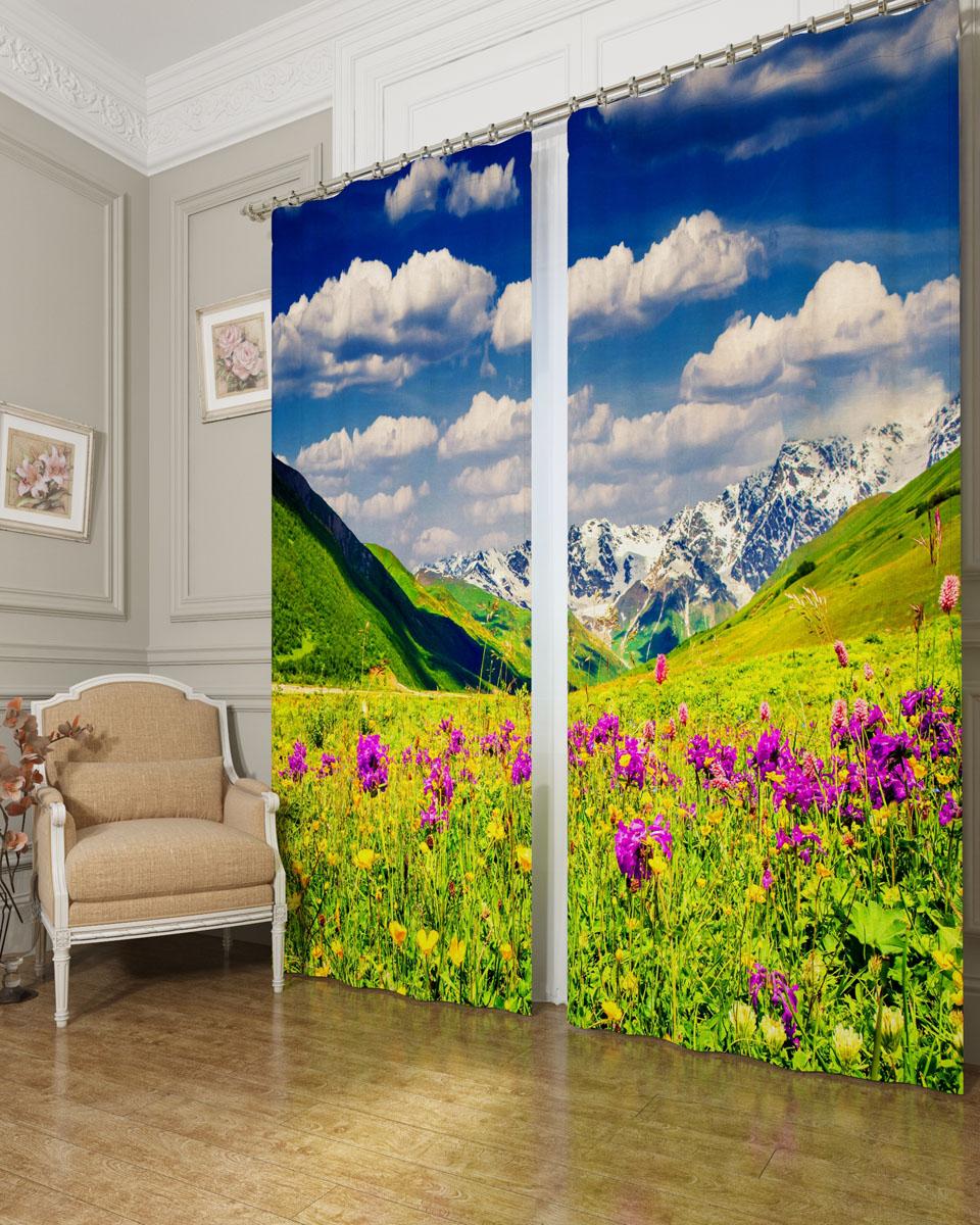 Комплект фотоштор Сирень Альпы и цветы, на ленте, высота 260 см03477-ФШ-БЛ-001Фотошторы Сирень Альпы и цветы, выполненные из блэкаута, отлично дополнят украшение любого интерьера. Блэкаут - это трехслойная светонепроницаемая ткань - 100% полиэстер, по структуре напоминает плотный хлопок, очень мягкий,с небольшим сероватым оттенком из-за черной нити, входящей в состав ткани. Блэкаут не требует особого ухода, хорошо драпируется. Пропускает солнечные лучи не более 5%. Крепление на карниз при помощи шторной ленты на крючки. В комплекте 2 шторы. Ширина одного полотна: 145 см.Высота штор: 260 см.Рекомендации по уходу: стирка при 30 градусах, гладить при температуре до 110 градусов.Изображение на мониторе может немного отличаться от реального.