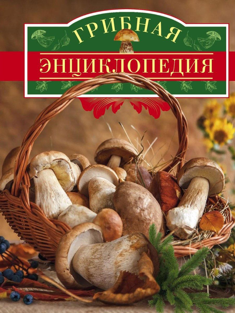 В. Арчер Грибная энциклопедия