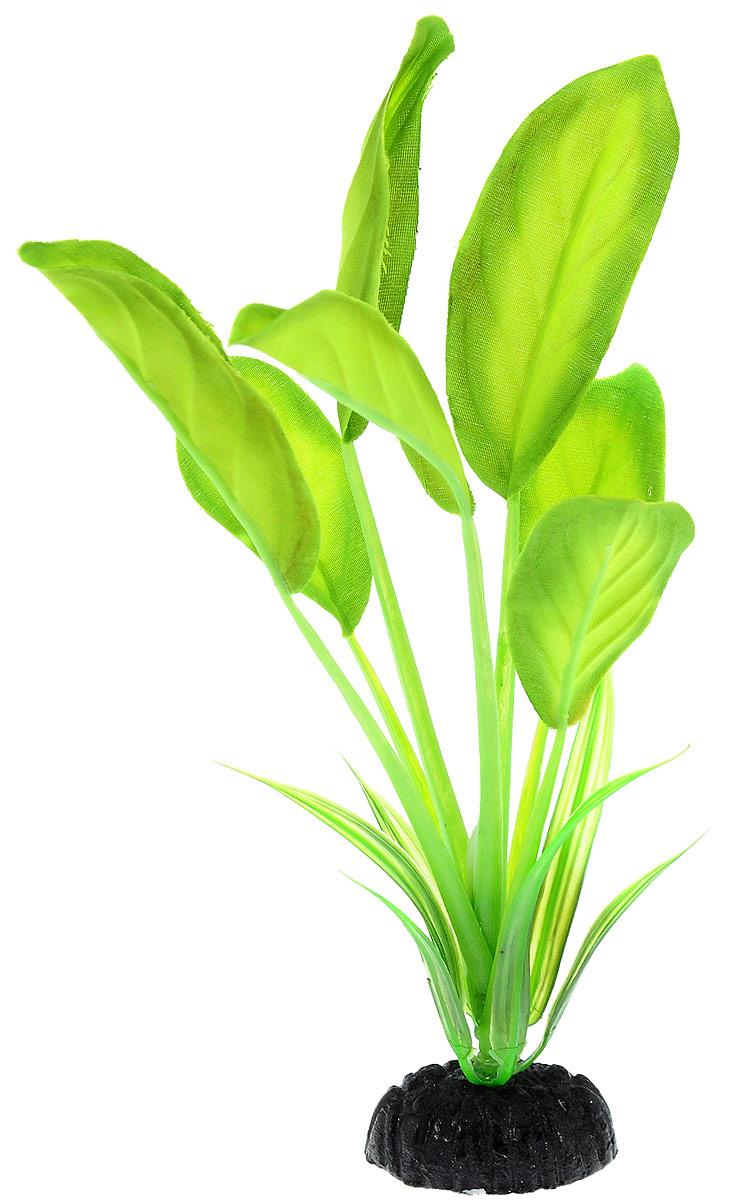 Растение для аквариума Barbus Эхинодорус, шелковое, высота 20 см. Plant 037/20Plant 037/20Растение для аквариума Barbus Эхинодорус, выполненное из высококачественного нетоксичногопластика и шелка, станет прекрасным украшением вашего аквариума. Шелковое растениеидеально подходит для дизайна всех видов аквариумов. В воде происходит абсолютнаяимитация живых растений. Изделие не требует дополнительного ухода и просто в применении. Растение абсолютно безопасно, нейтрально к водному балансу, устойчиво к истиранию краски,подходит как для пресноводного, так и для морского аквариума.Растение для аквариума Barbus Эхинодорус поможет вам смоделировать потрясающий пейзажна дне вашего аквариума или террариума.