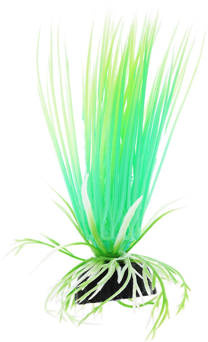"""Растение для аквариума Barbus """"Акорус"""", пластиковое, светящееся, высота 10 см"""