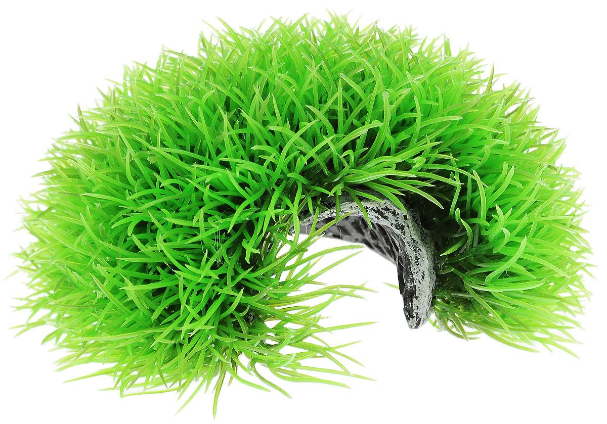 Растение для аквариума Barbus Лохматая норка, пластиковое, диаметр 15 см растение для аквариума barbus амбулия пластиковое высота 20 см