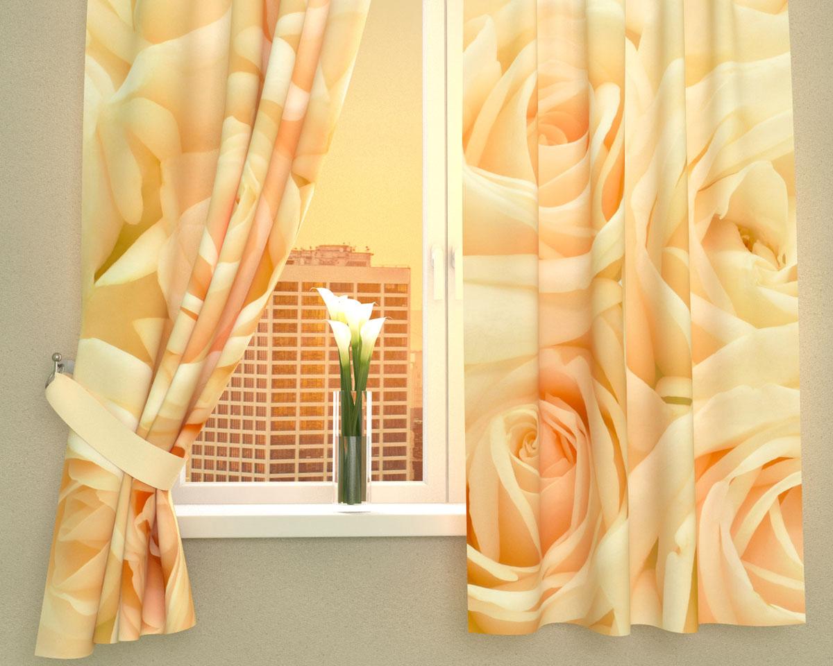 Комплект фотоштор Сирень Нежность, на ленте, высота 160 см01131-ФК-ГБ-002Фотошторы для кухни Сирень Нежность, выполненные из габардина (100% полиэстера), отлично дополнят украшение любого интерьера. Особенностью ткани габардин является небольшая плотность, из-за чего ткань хорошо пропускает воздух и солнечный свет. Ткань хорошо держит форму, не требует специального ухода. Крепление на карниз при помощи шторной ленты на крючки. В комплекте 2 шторы. Ширина одного полотна: 145 см.Высота штор: 160 см.Рекомендации по уходу: стирка при 30 градусах, гладить при температуре до 110 градусов.Изображение на мониторе может немного отличаться от реального.Подхваты в комплект не входят.