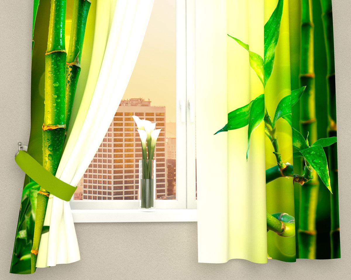 Комплект фотоштор Сирень Стебель бамбука, на ленте, высота 160 см03250-ФК-ГБ-002Фотошторы для кухни Сирень Стебель бамбука, выполненные из габардина (100% полиэстера), отлично дополнят украшение любого интерьера. Особенностью ткани габардин является небольшая плотность, из-за чего ткань хорошо пропускает воздух и солнечный свет. Ткань хорошо держит форму, не требует специального ухода. Крепление на карниз при помощи шторной ленты на крючки. В комплекте 2 шторы. Ширина одного полотна: 145 см.Высота штор: 160 см.Рекомендации по уходу: стирка при 30 градусах, гладить при температуре до 110 градусов.Изображение на мониторе может немного отличаться от реального.Подхваты в комплект не входят.