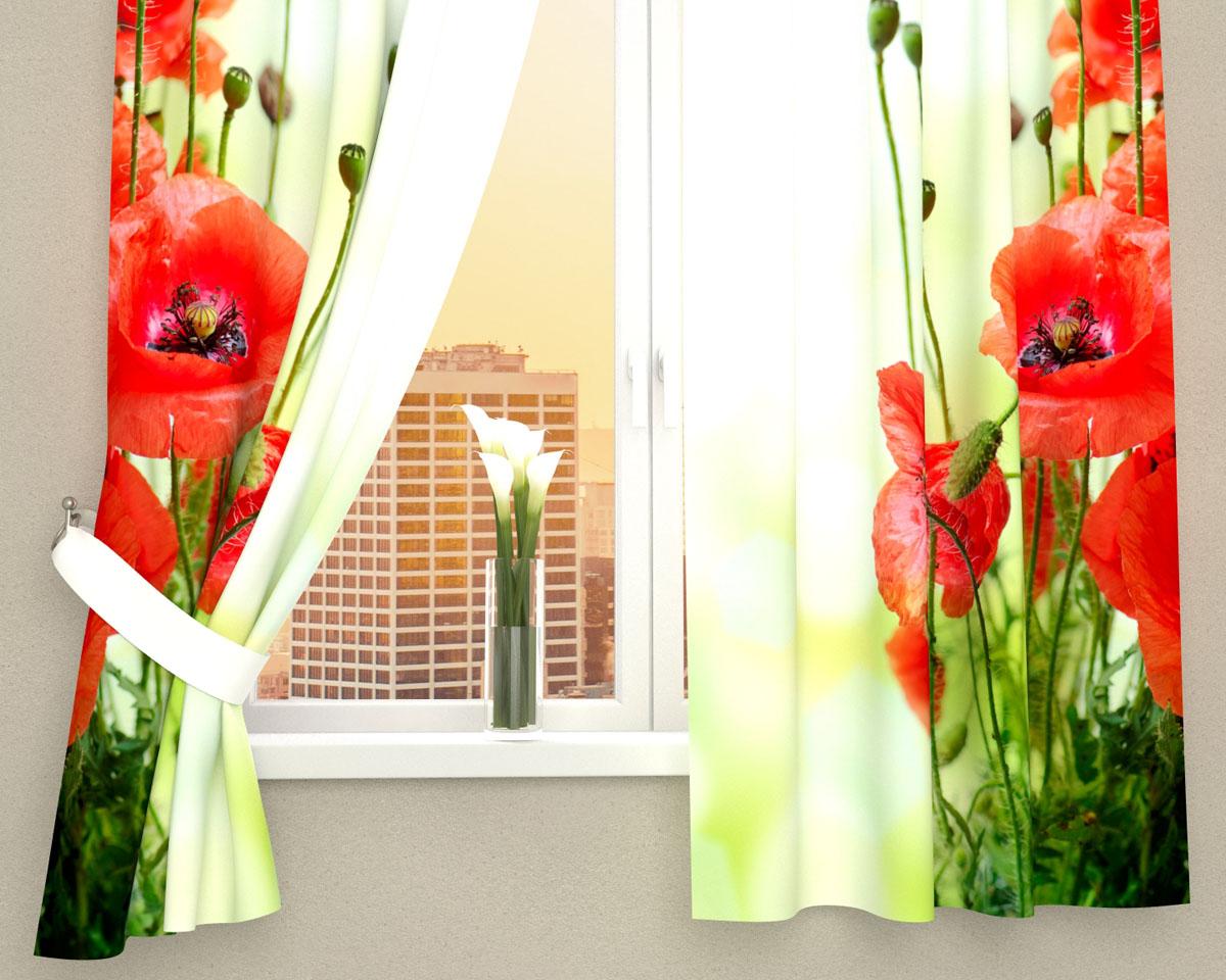 Комплект фотоштор Сирень Маки на зеленом фоне, на ленте, высота 160 см03563-ФК-ГБ-002Фотошторы для кухни Сирень Маки на зеленом фоне, выполненные из габардина (100% полиэстера), отлично дополнят украшение любого интерьера. Особенностью ткани габардин является небольшая плотность, из-за чего ткань хорошо пропускает воздух и солнечный свет. Ткань хорошо держит форму, не требует специального ухода. Крепление на карниз при помощи шторной ленты на крючки. В комплекте 2 шторы. Ширина одного полотна: 145 см.Высота штор: 160 см.Рекомендации по уходу: стирка при 30 градусах, гладить при температуре до 110 градусов.Изображение на мониторе может немного отличаться от реального.Подхваты в комплект не входят.