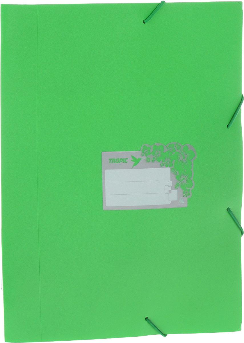 Бюрократ Папка-короб на резинке Tropic формат А4 цвет зеленый816252Папка-короб на резинке Tropic - это удобный и функциональный офисный инструмент, предназначенный для хранения и транспортировки большого объема рабочих бумаг и документов формата А4. На лицевой стороне папки имеется место для ФИО владельца, оформленное рисунком с тропическими цветами. Папка изготовлена из жесткого, но гибкого фактурного пластика и закрывается при помощи угловых резинок. Резинки не позволят папке раскрыться в неподходящий момент. Папка надежно сохранит ваши документы и сбережет их от повреждений, пыли и влаги.