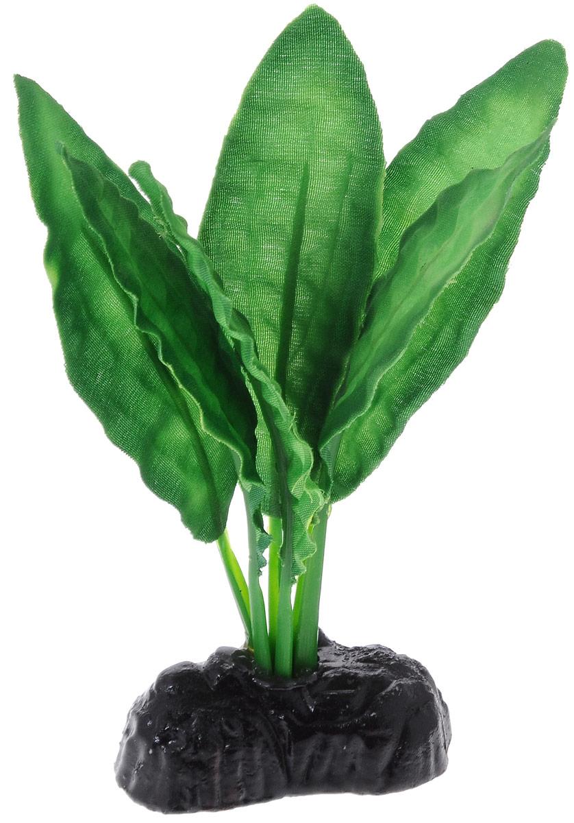 Растение для аквариума Barbus Эхинодорус блейхери, шелковое, высота 10 смPlant 050/10Растение для аквариума Barbus Эхинодорус блейхери, выполненное из качественного шелка, станет оригинальным украшением вашего аквариума. В воде создается абсолютная имитация живого растения. Можно использовать в любой воде: пресной или морской. Изделие полностью безопасно для обитателей аквариума, не токсично, нейтрально к водному балансу, устойчиво к истиранию краски. Растение Barbus поможет вам смоделировать потрясающий пейзаж на дне вашего аквариума или террариума. Высота растения: 10 см.
