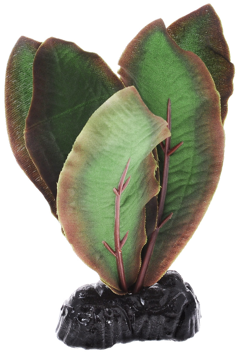 Растение для аквариума Barbus Криптокорина Бекетти, шелковое, высота 10 смPlant 040/10Растение для аквариума Barbus Криптокорина Бекетти, выполненное из качественного шелка, станет оригинальным украшением вашего аквариума. В воде создается абсолютная имитация живого растения. Можно использовать в любой воде: пресной или морской. Изделие полностью безопасно для обитателей аквариума, не токсично, нейтрально к водному балансу, устойчиво к истиранию краски. Растение Barbus поможет вам смоделировать потрясающий пейзаж на дне вашего аквариума или террариума. Высота растения: 10 см.