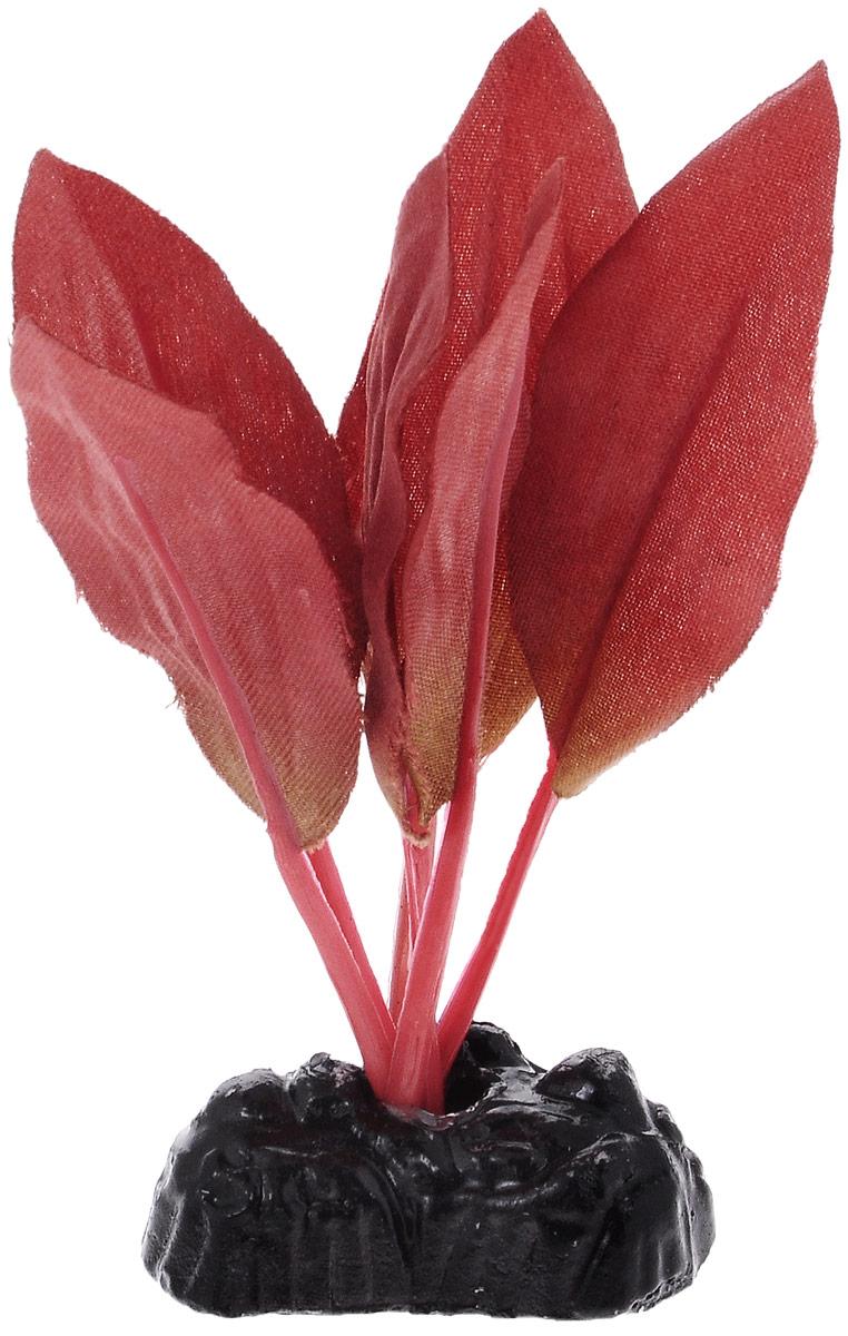 Растение для аквариума Barbus Криптокорина красная, шелковое, высота 10 см растение для аквариума barbus кабомба красная пластиковое высота 50 см