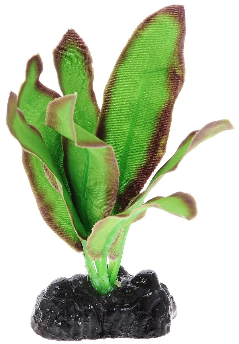Растение для аквариума Barbus Эхинодорус Бартхи, шелковое, цвет: зеленый, коричневый, высота 10 смPlant 045/10Растение для аквариума Barbus Эхинодорус Бартхи, выполненное из качественного шелка, станет оригинальным украшением вашего аквариума. В воде создается абсолютная имитация живого растения. Можно использовать в любой воде: пресной или морской. Изделие безопасно, не токсично, нейтрально к водному балансу, устойчиво к истиранию краски. Растение Barbus поможет вам смоделировать потрясающий пейзаж на дне вашего аквариума или террариума. Высота растения: 10 см.
