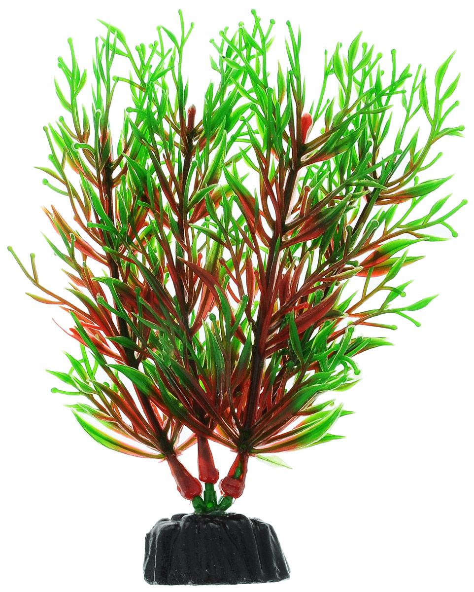 Растение для аквариума Barbus Перистолистник красный, пластиковое, высота 10 смPlant 001/10Растение Barbus Перистолистник красный, выполненное из высококачественного нетоксичного пластика, станет прекрасным украшением вашего аквариума. Пластиковое растение идеально подходит для дизайна всех видов аквариумов. В воде происходит абсолютная имитация живых растений. Изделие не требует дополнительного ухода. Оно абсолютно безопасно, нейтрально к водному балансу, устойчиво к истиранию краски, подходит как для пресноводного, так и для морского аквариума. Растение для аквариума Barbus Перистолистник красный поможет вам смоделировать потрясающий пейзаж на дне вашего аквариума.Высота растения: 10 см.