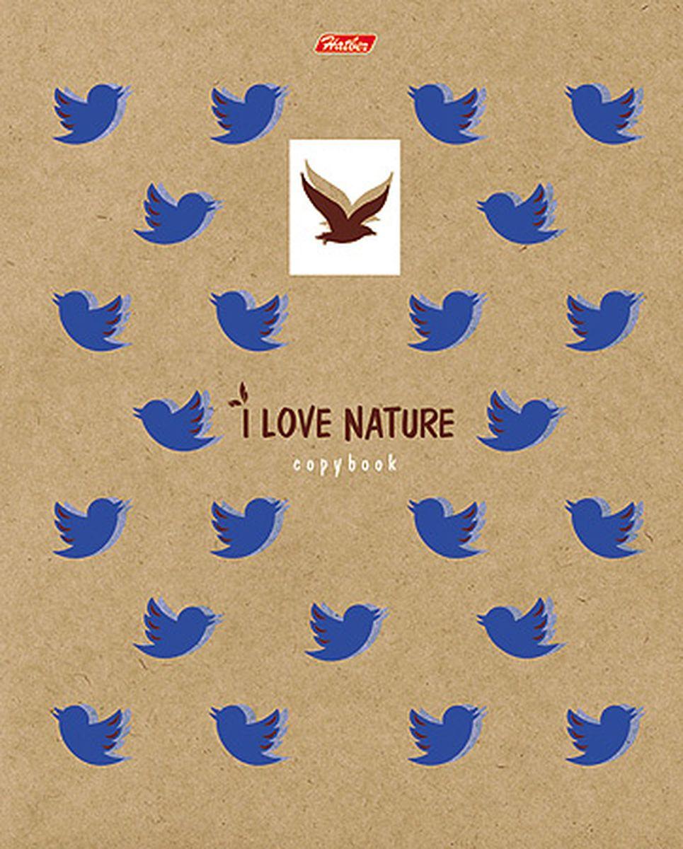 Hatber Тетрадь Птички 48 листов в клетку48Т5влВ1_ птичкиВеликолепные тетради в клетку, обложка - из мелованного картона. Скрепление - скоба. Внутренний блок из высококачественного офсета 60гр/м, красные поля.