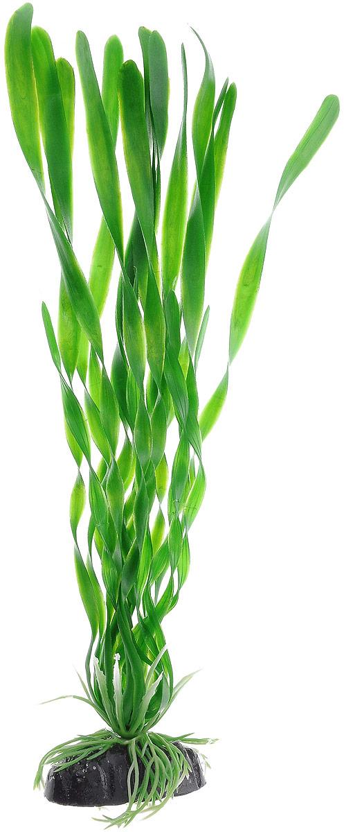 """Растение для аквариума Barbus """"Валлиснерия спиральная"""", пластиковое, высота 30 см"""
