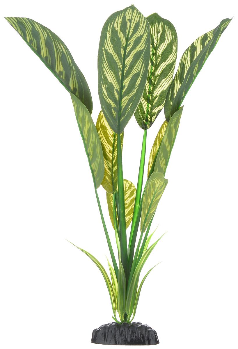 Растение для аквариума Barbus Диффенбахия тигровая, шелковое, высота 30 смPlant 036/30Растение для аквариума Barbus Диффенбахия тигровая, выполненное из качественного шелка, станет прекрасным украшением вашего аквариума. Шелковое растение идеально подходит для дизайна всех видов аквариумов. В воде происходит абсолютная имитация живых растений. Изделие не требует дополнительного ухода и просто в применении. Растение абсолютно безопасно, нейтрально к водному балансу, устойчиво к истиранию краски, подходит как для пресноводного, так и для морского аквариума. Растение для аквариума Barbus поможет вам смоделировать потрясающий пейзаж на дне вашего аквариума или террариума. Высота растения: 30 см.