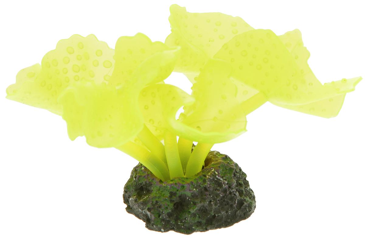 Декорация для аквариума Barbus Коралл, силиконовая, цвет: желтый, 3,5 х 3,5 х 7 смDecor 210Декорация для аквариума Barbus Коралл, выполненная из высококачественного силикона, станет оригинальным украшением вашего аквариума. Изделие отличается реалистичным исполнением, в воде создается полная имитация настоящего коралла. Декорация абсолютно безопасна, нейтральна к водному балансу, устойчива к истиранию краски, не токсична, подходит как для пресноводного, так и для морского аквариума. Благодаря декорациям Barbus вы сможете смоделировать потрясающий пейзаж на дне вашего аквариума.